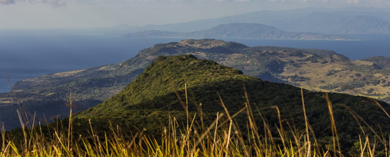 Timor-Leste: Crest, Mountain, Mountain Range, Nature, Outdoors, Peak, Countryside, Hill, Flora, Grass, Plant