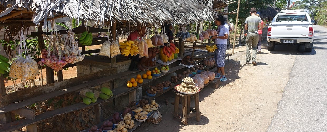Timor-Leste: Human, People, Person, Market, Bazaar, Shop, Automobile, Car, Transportation, Vehicle, Canopy, Umbrella, Suv, Jeep, Coconut, Flora, Food, Fruit, Grain, Nut, Plant, Produce, Seed, Vegetable, Offroad, Pickup Truck, Truck, Sedan
