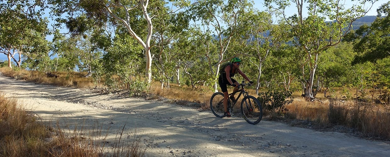 Timor-Leste: Bicycle, Bike, Mountain Bike, Transportation, Vehicle, Dirt Road, Gravel, Road, Flora, Forest, Land, Nature, Outdoors, Plant, Tree, Vegetation, Cyclist, Human, Person, Sport, Sports, Path, Trail