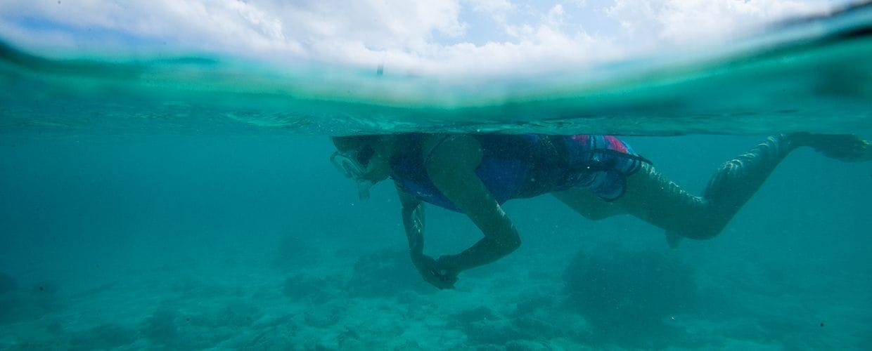 Timor-Leste: Diver, Diving, Human, Person, Sport, Sports, Water