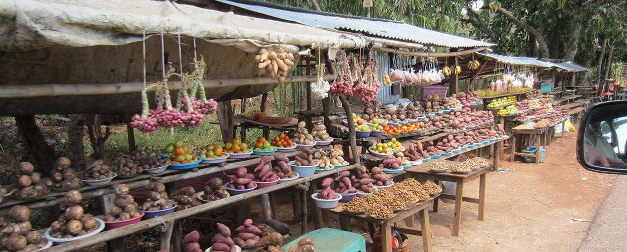 Timor-Leste: Market, Grocery Store, Shop, Flora, Food, Fruit, Plant, Produce, Bazaar, Lumber, Wood, Furniture, Tabletop