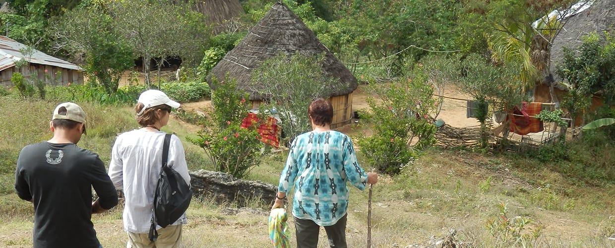 Timor-Leste: Human, People, Person, Flora, Jar, Plant, Potted Plant, Pottery, Vase, Backyard, Outdoors, Yard, Clothing, Shirt, Building, Cottage, House, Housing, Hiking, Leisure Activities, Conifer, Tree, Yew, Forest, Land, Nature, Vegetation, Path, Trail, Garden, Gardening, Soil