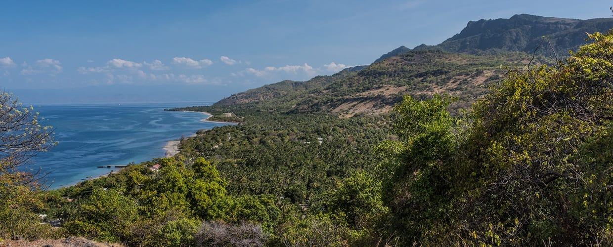 Timor-Leste: Promontory, Cliff, Outdoors, Crest, Mountain, Mountain Range, Nature, Coast, Ocean, Sea, Water, Bush, Flora, Plant, Vegetation, Landscape, Scenery, Conifer, Tree