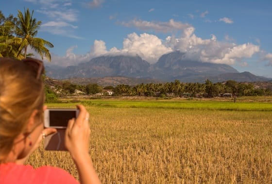 Timor-Leste: Human, People, Person, Arecaceae, Flora, Palm Tree, Plant, Tree, Tropical, Coast, Nature, Ocean, Outdoors, Sea, Water, Food, Grain, Produce, Vegetable, Wheat, Countryside, Harvest, Leisure Activities, Sand, Soil, Grass